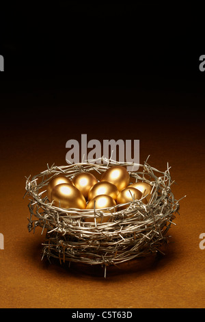 Nest Egg Concept Symbolizing Security - Stock Image