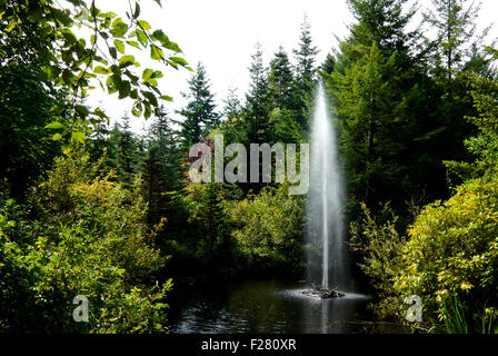 Fountain in pond at Kitty Coleman Woodland Garden Courtney BC Canada - Stock Image
