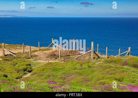 Abandoned mine shaft which has been covered over, on the North Cornish Coast near St Agnes Head, beside the south west coast path. - Stock Image