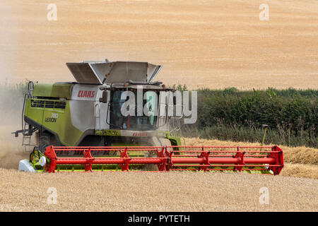 A combine harvester working in a field of wheat in North Yorkshire in the United Kingdom. - Stock Image