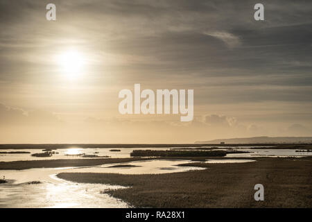 The Sea Marshes, Rye, East Sussex, UK. - Stock Image