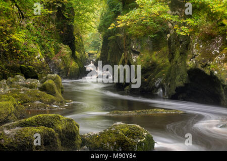 The mystical Fairy Glen near Betws y Coed in Snowdonia National Park, North Wales. Autumn (September) 2017. - Stock Image