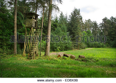 A Schießstand, or hunting stand, by a meadow in a forest of Lower Saxony / Niedersachsen, Germany / Deutschland. - Stock Image