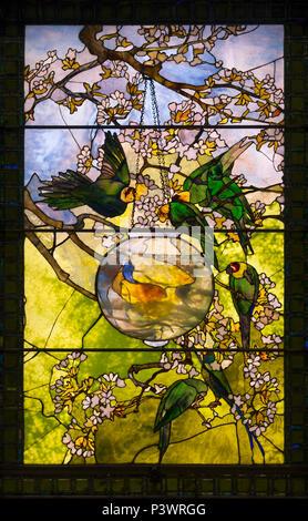 Parakeets and Gold Fish Bowl, Louis Comfort Tiffany, circa 1893, Museum of Fine Arts, Boston, Mass, USA, North America - Stock Image