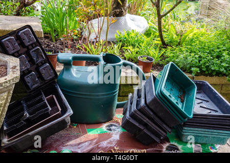 Seed trays, a watering can and a growbag in a corner of a residential back garden ready to use. - Stock Image
