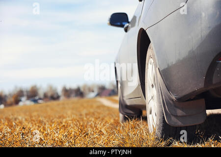 The car is parked in the field. The car is driving along the rural road to the house. The car is gray in the meadow in front of country road - Stock Image