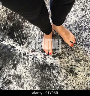 Women's feet with red nail polish on a black & white cowhide rug - Stock Image