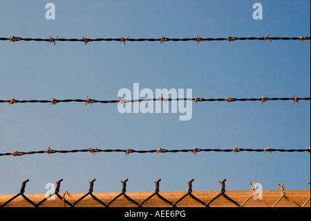 Gold Barbed Wire - Stock Image