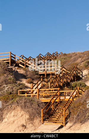 Timber steps on the sand dunes at Moses Rock Beach, Western Australia - Stock Image