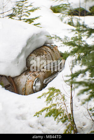 The hood of a 1950 Dodge pickup truck peaking out from the deep snow. Noxon, Montana, USA.  This image was shot with an antique Petzval lens and will  - Stock Image