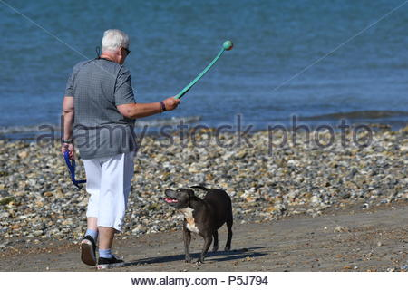 Littlehampton, UK. Wednesday 27th June 2018. A woman walks a dog on the beach on another very warm and sunny morning in Littlehampton, on the South Coast. Credit: Geoff Smith / Alamy Live News. - Stock Image