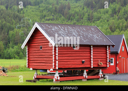 Traditional red wooden grain store on stilts on a farm in Telemark Norway Scandinavia - Stock Image