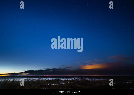 A night in June in Kemeru swamp, Latvia. - Stock Image