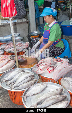 Nakhon SI Thammarat, Thailand-February 11th 2015.  A fish vendor on the market. The market is open every morning. - Stock Image