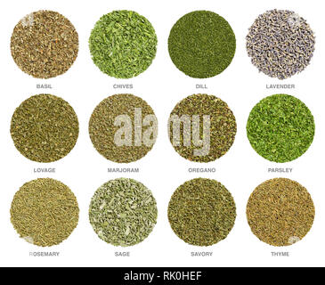 Twelve dried common culinary herbs, herbal circles. Dried food additives, used for cooking, from above, isolated, closeup, macro photo. - Stock Image