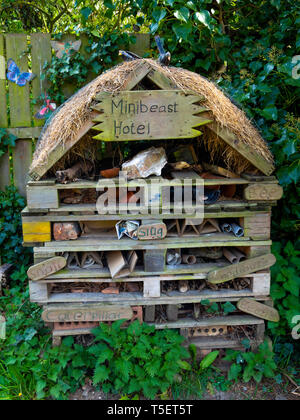 A bug house built from bricks tiles and wood to provide for conservation breeding hibernation and study of insects - Stock Image