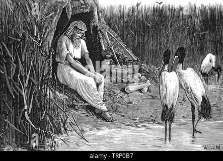 When Sabaco , an Etheopian conquered Egypt around 744 BC to create the 25th Dynasty, Anysis, a blind king took to an island in the marshes of the Nile delta where he stayed for the duration of Sabaco's reign. - Stock Image