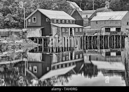 in Seal Cove, Grand Manan Island, New Brunswick, Canada - Stock Image