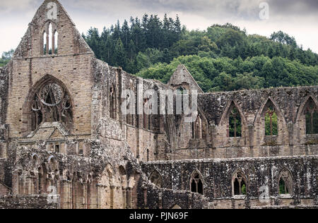The monastic ruins of Tintern Abbey in Monmouthshire, Wales - Stock Image