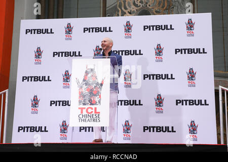 Pitbull is honoured with a hand and footprint ceremony at the TCL Chinese Theatre  Featuring: Pitbull, Armando Christian Perez Where: Los Angeles, California, United States When: 14 Dec 2018 Credit: Sheri Determan/WENN.com - Stock Image