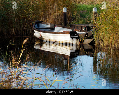 Boat moored in the narrow cut of West Somerton staithe, a remote part of the Norfolk Broads accessed via the River Thurne and Martham Broad. - Stock Image