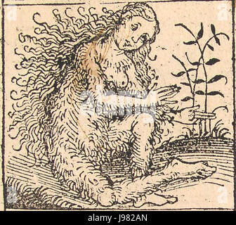 Nuremberg chronicles   Strange People   Hairy Lady (XIIv) - Stock Image