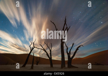 Stars and storm clouds over the dead acacia trees in Dead Vlei.Sossusvlei, Namibia - Stock Image