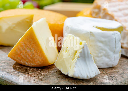 Belgian cheeses collection, yellow abbey beer cheeses and brie with white mold served on marble plate  close up - Stock Image