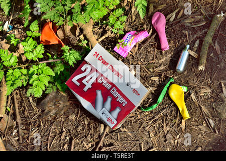 Litter. Discarded balloons and nitrous oxide cream charger refill box and canister dumped by woodland path - Stock Image