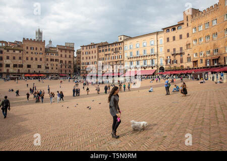 Siena Piazza Del Campo, historic and world heritage fan shaped square in Siena city centre,Tuscany,Italy,Europe - Stock Image
