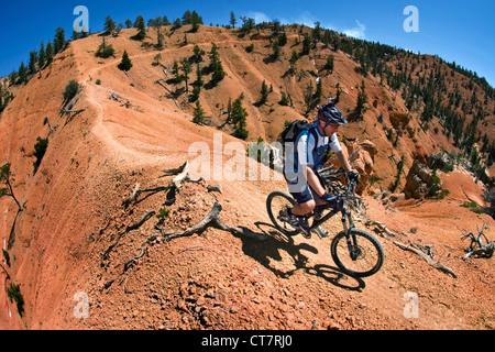 mountain biker on Thunder Mountain Trail, Red Mountain, Utah, USA - Stock Image