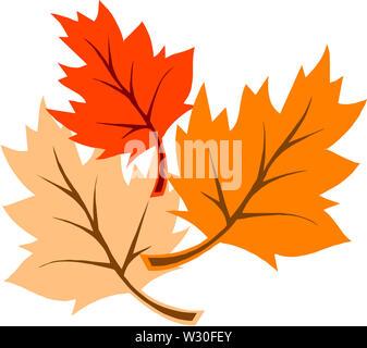 autumn leaf nature season plant fall illustration - Stock Image