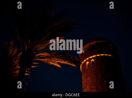 old stone tower and palm tree illuminated at night - Stock Image