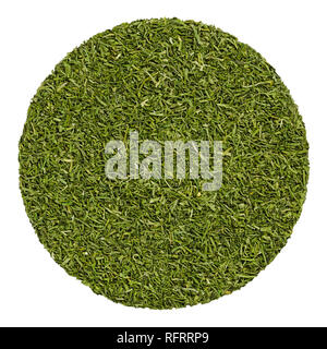 Dried dill fronds. Herb circle from above, isolated, over white.Disc made of shredded green leaves of Anethum graveolens, also called dill weed. - Stock Image