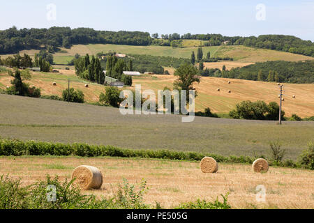 French countryside and arable farm, Lot et Garonne, Aquitaine France Europe - Stock Image