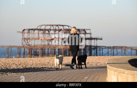 Brighton, UK. 26th Jan, 2019. A beautiful sunny morning on Brighton seafront as the unusually warm weather continues throughout Britain with some areas forecast to reach over 20 degrees centigrade again Credit: Simon Dack/Alamy Live News - Stock Image