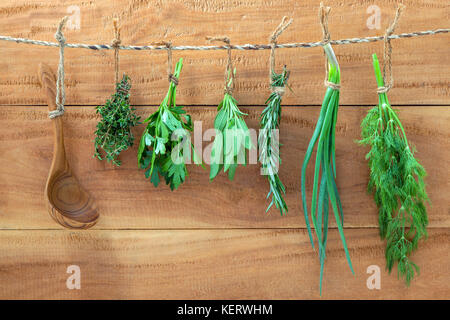 Assorted hanging herbs ,parsley ,sage,rosemary,spring onion and dill  and thyme for seasoning concept on rustic - Stock Image
