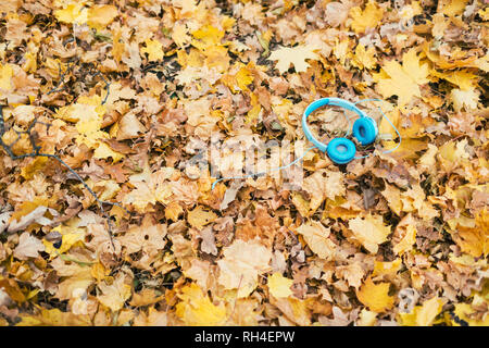 Blue headphones laying in yellow autumn leaves - Stock Image