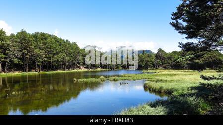 Panorama to Bassa de Oles. Aran valley in the Catalan Pyrenees, Spain - Stock Image