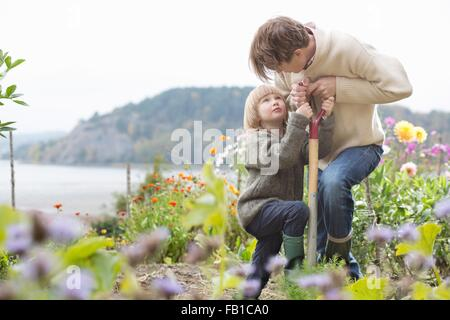 Mature man and son digging organic garden, Orust, Sweden - Stock Image