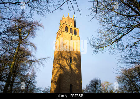 Faringdon Folly Tower - Stock Image