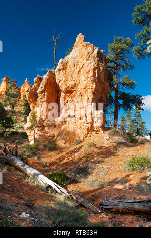 Colorful eroded sansdstone formation against a deep blue sky in Bryce Canyon National Park, Utah, USA. - Stock Image