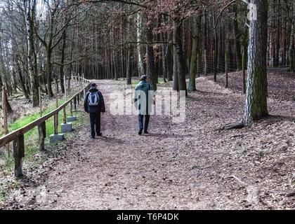 Germany, Schorfheide Game Reserve, Wildpark Schorfheide, Wildlife park for local fauna & domestic animals under threat of extinction - Stock Image