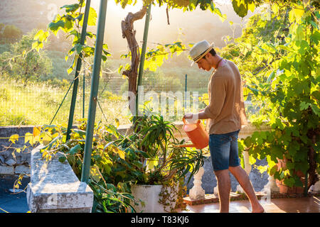 Side view of young stylish man watering plants in garden in sunlight - Stock Image