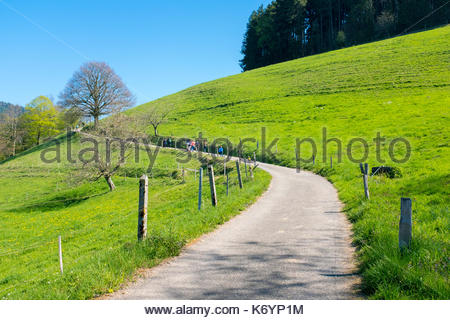 Path though countryside in early Spring. Münstertal, Breisgau-Hochschwarzwald, Baden-Württemberg, Germany - Stock Image