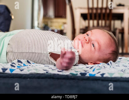 Five week old new born baby boy - Stock Image