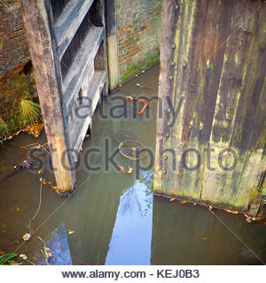 Derelict lock gates on the Basingstoke Canal;  Deepcut Locks, Pirbright, Surrey England UK, – 1968 - Stock Image