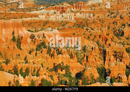Bryce canyon national park in Utah, USA - Stock Image