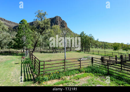 Cattle holding pen near Minerva Hills National Park, South West Queensland, QLD, Australia - Stock Image