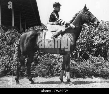 Triple Crown Winner War Admiral, 1937 - Stock Image